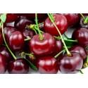 Wiśnie, Czereśnie, Śliwki, Brzoskwinie i inne pestkowe